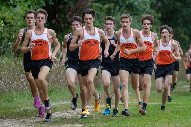 Brighton dominates the Livingston County cross country honor roll.