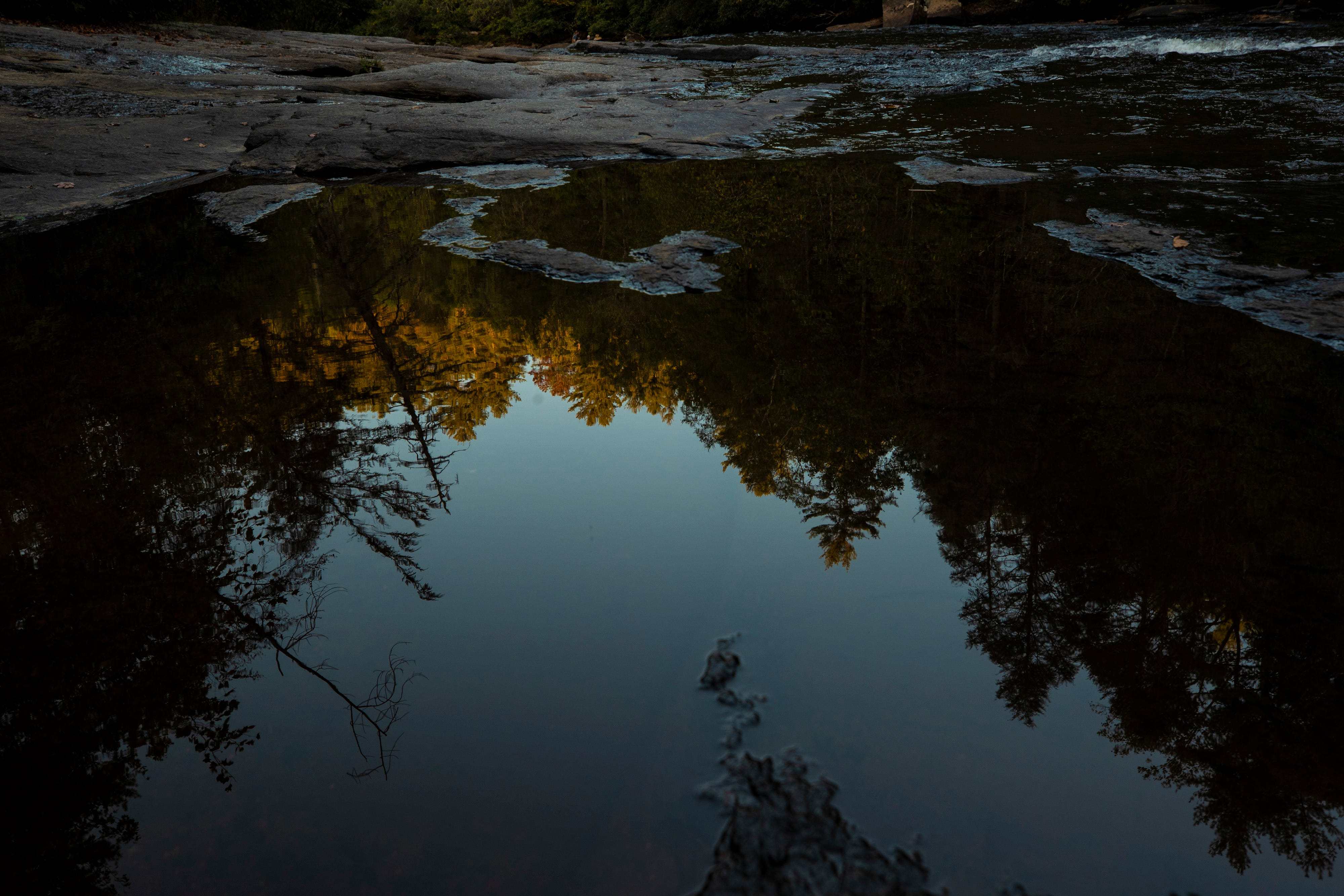 Trees catch the last bit of golden light as they are reflected in a puddle in the mountains of central North Carolina.