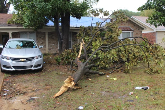 A tree damaged part of Katrina Thomas' home along Cottonwood Road after a tornado hit Southeast Memphis.