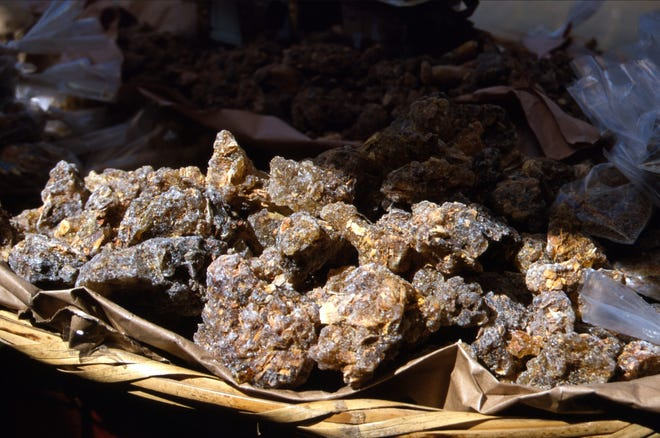 Raw copal gathered from jungle trees was first used by the Aztecs as incense.