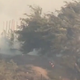 Santa Ana winds were a major factor in the battle against the Easy Fire in Simi Valley.