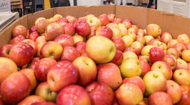 The recalled apples were shipped Oct. 16-21 to wholesalers, retailers and brokers in Florida, Illinois, Kentucky, Louisiana, Michigan, North Carolina, Texas and Wisconsin.