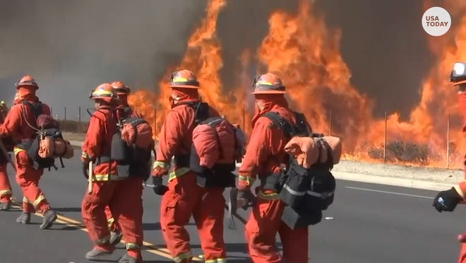 Ronald Reagan Library is safe from Easy Fire flames because of firefighters and goats