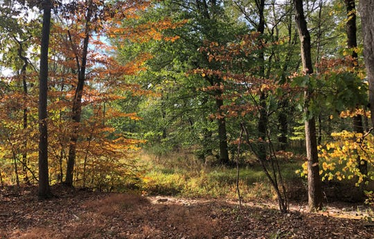 New Jersey Conservation Foundation has preserved 18 more acres along the Wickecheoke Creek greenway in Raritan Township.