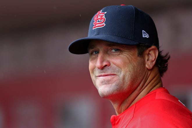 Former St. Louis Cardinals manager Mike Matheny was named manager of the Kansas City Royals on Thursday.