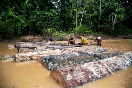 In this March 17, 2015 file photo, Ashaninka Indian men, identified by locals as illegal loggers, tie tree trunks together to move them along the Putaya River near the hamlet of Saweto, Peru. Authorities in Peru said on Thursday, Oct. 31, 2019, that they have charged five men in the timber industry with homicide in the deaths of indigenous activists who had battled illegal logging in their remote Amazon jungle homeland.