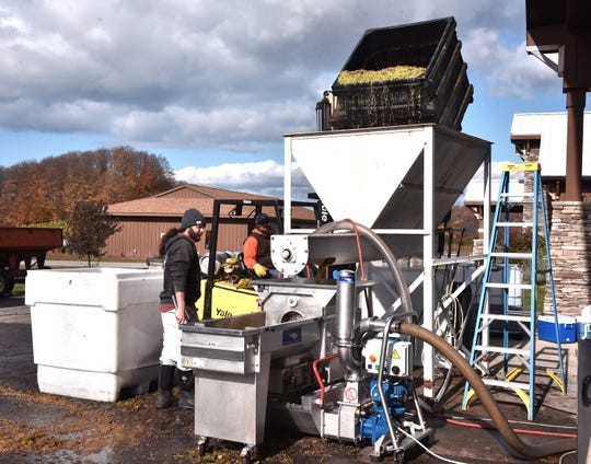 Craig Russell, standing left, and Dustin Stabile, winemaker at Mackinaw Trail Winery, pour crushed grapes into a machine to separate the juices from the Riesling grape pulp Wednesday, Oct. 30.