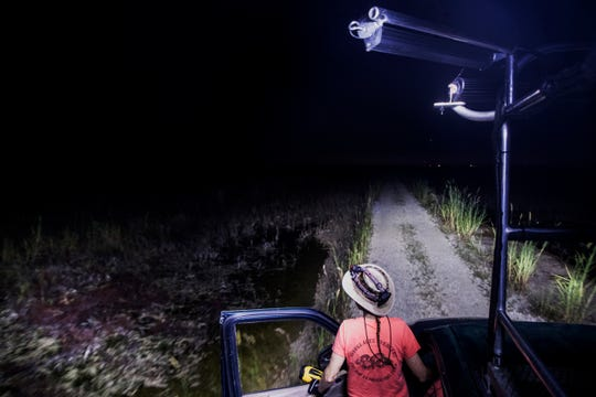 Donna Kalil searches for wild Burmese pythons in the Everglades west of Miami on Monday October, 28, 2019. She hunts several days a week and has notched hundreds of the invasive species. The pythons have invaded the Everglades and have caused havoc to the ecosystem.