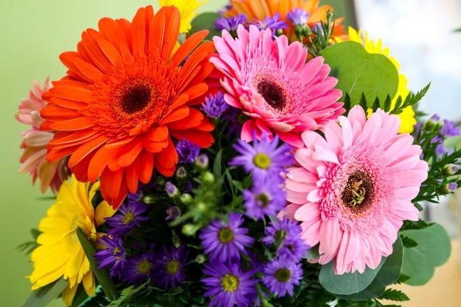A bouquet of Gerbera daisies.