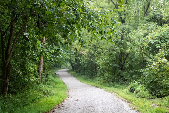A winding gravel road near the Shoe Tree in rural Crawford County, Ind., on Friday, Aug. 23, 2019.