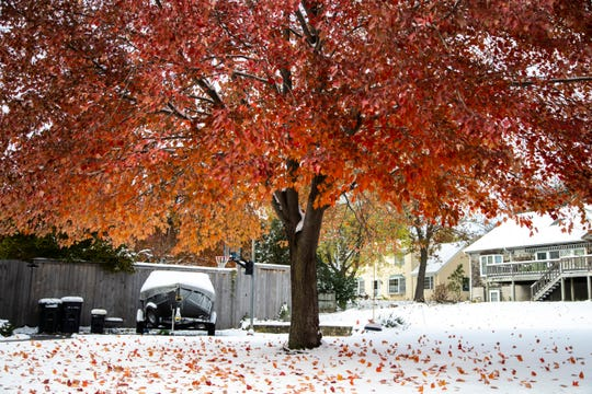 Snow covers the ground while trees lose their leaves on the morning of Halloween, Thursday, Oct., 31, 2019, in Iowa City, Iowa.