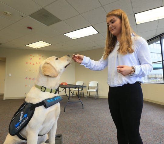 Marist College senior and Takoda Service Dogs volunteer Ashley Jordan works with Raider on October 30, 2019.