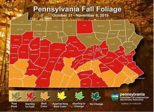 Pennsylvania fall foliage map Week 6.