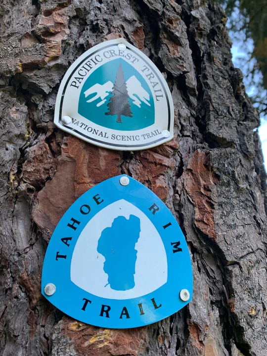 Signs mark the Tahoe Rim Trail and the Pacific Crest Trail.