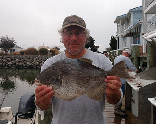 Ocean City resident Mike Glyphis caught a record 5.6 pound Triggerfish on Oct. 30, 2019 about 16 miles off the coast of Ocean City.