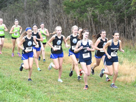 Fort Defiance, with five runners in the top 12, won the girls meet at Wednesday's Shenandoah District cross country championship.