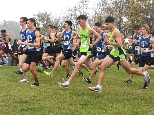The start of the boys race at Wednesday's Shenandoah District cross country meet.