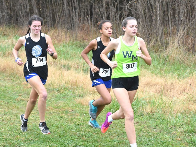 Fort Defiance's Delaney Stogdale (744) and Trinity Neff (739), and Wilson Memorial's Eliza Dana run in Wednesday's Shenandoah District cross country championship meet.