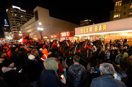 Budweiser's iconic Clydesdales walk in a procession, Wednesday, Oct. 30, 2019, in Salt Lake City, to celebrate the changing beer laws in the state. (Francisco Kjolseth/The Salt Lake Tribune via AP)
