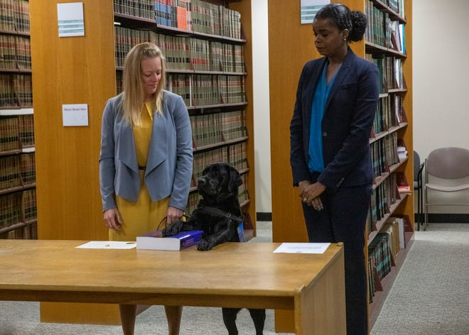 In this Tuesday, Oct. 29, 2019 photo, Hatty's primary handler and victim witness specialist Stephanie Coehlo, left, holds the black lab as Hatty is sworn in by Cook County State's Attorney Kimberly Foxx at the George N. Leighton Criminal Courthouse in Chicago's Little Village neighborhood. Hatty will provide comfort and assistance to young and mentally disabled victims of sexual assault and violence.