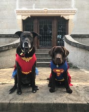 Superheroes Samuel and his big sister Sydney are here to save the day, Short Listers.