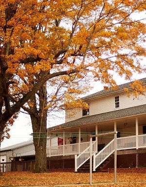The leaves have changed color at Lovina's home as October ends.