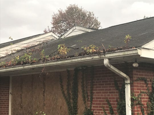 Plants grow in the gutter of a building at the former Bancroft campus in Haddonfield.