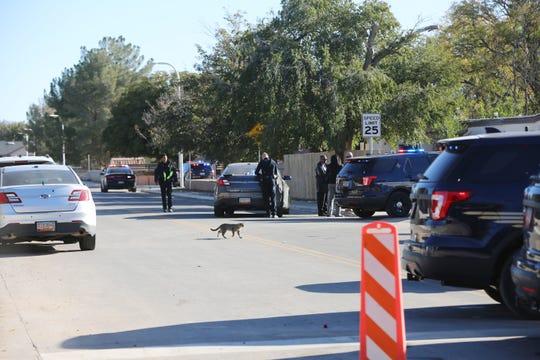 Las Cruces police investigate a suspicious death in the 300 block of Richard Avenue, Friday Nov. 1, 2019.