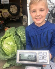 Ryder Raney's cabbage weighed in at 25.6 pounds.