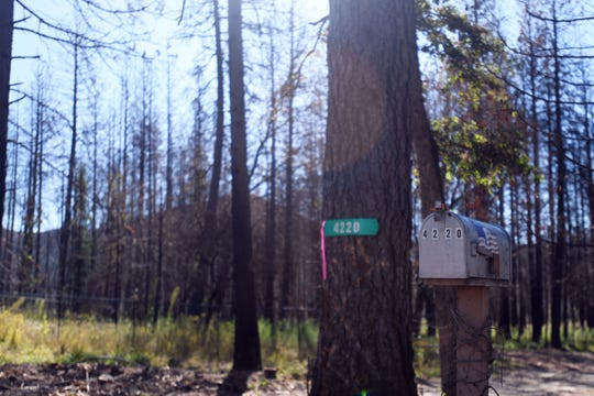 The mailbox and address sign are the only things left standing of the home that once belonged to Ellen and Lon Walker in Concow, California after it was burned by the Camp Fire in 2018. Ellen, along with a still unidentified person, were two of 85 people who were killed in the fire.