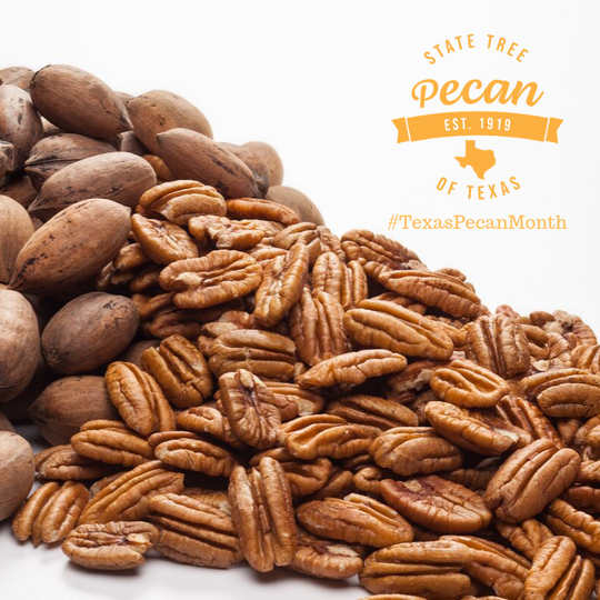 This year marks the 100th anniversary of the pecan tree being named the Texas State Tree by the state legislature.
