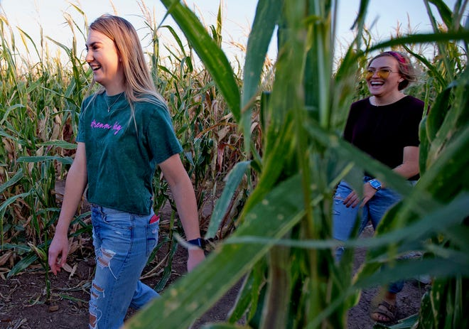 Harley Kendall, left, and Alyssa Sallee try to find their way out of the Circle S Corn Maze on Wednesday, Oct. 23, 2019.