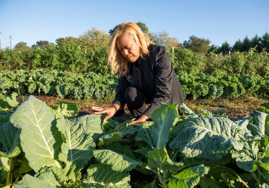 Dawn Hilton Williams sifts through collard greens at Maranatha Farms in Greenville, in October of 2019.