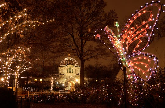 Holiday Lights at the Bronx Zoo