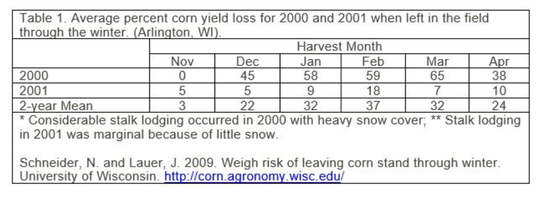 Grain loss due to delayed harvest is minimal in November but has the potential to increase substantially if harvest is delayed into the winter and spring months.