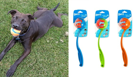 Best gifts for dogs 2019: Chuckit! Sport Launcher Dog Ball Thrower