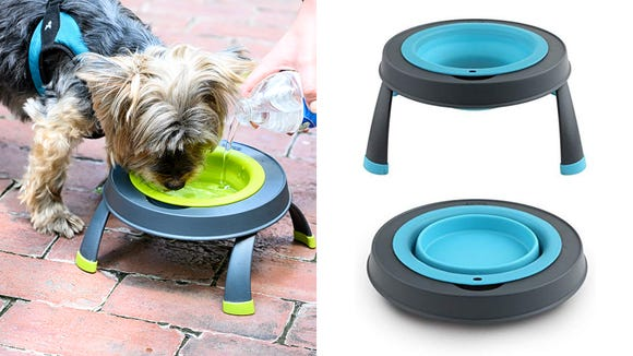 Best gifts for dogs 2019: Dexas Popware for Pets Single Elevated Pet Feeder
