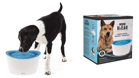 Best gifts for dogs 2019: Zeus Fresh & Clear Elevated Dog and Cat Water Dispenser