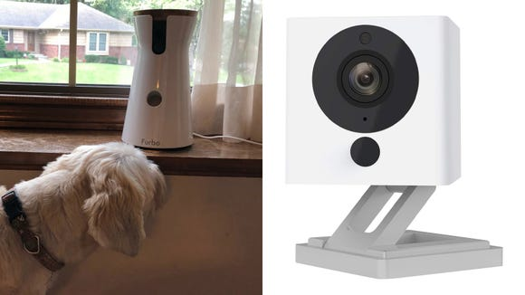 Best gifts for dogs 2019: Furbo Dog Camera / Wyze Cam v2