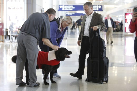 """<strong>DFW therapy dogs</strong><br /> <a href=""""https://www.dfwairport.com/dogsofdfw/index.php"""">DFW&rsquo;s Canine Crew</a> consists of 12 therapy dogs and their handlers who visit the terminals to spend time with passengers. If you need a furry fix, look for the dogs with the &ldquo;Pet Me&rdquo; vests."""