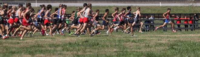 The pack is still together early on in the Class 2A State Championship in Cross Country on Nov. 2, 2019.