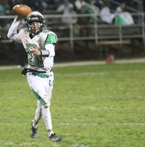 Clear Fork's Brennan South was named the Division IV co-Offensive Player of the Year in the Northwest District.