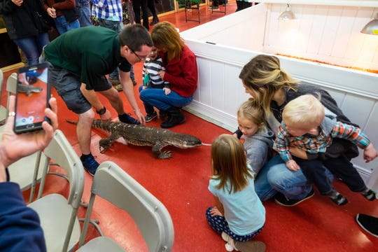 Little Ray's Nature Center Wildlife Educator Cameron McSheffrey follows Big Mama, a 10-year-old monitor lizard, as she walks around the Court of Flags Shopping Mall during an educational program Saturday, Nov. 2, 2019, in Port Huron.