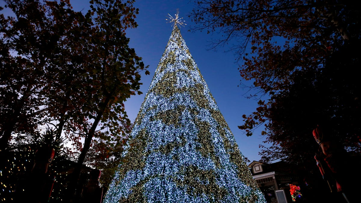 Silver Dollar City Unveils New 80 Foot Christmas Tree