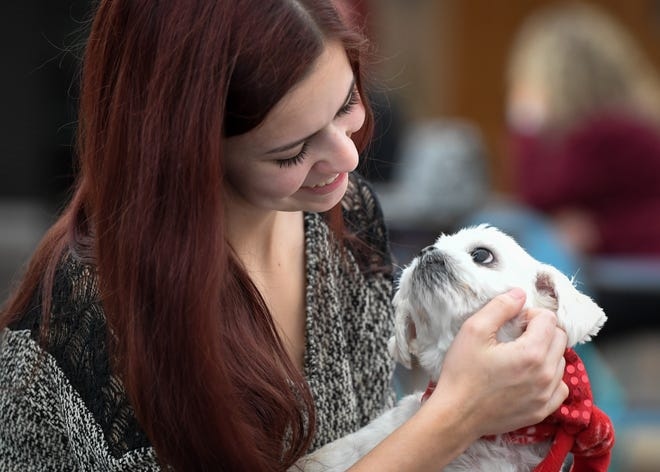 Haley Keown spends some time with her dog Cody while waiting their turn at the Vanderburgh Humane Society's 34th annual Pet Pictures with Santa held at Washington Square Mall Saturday, November 2, 2019.