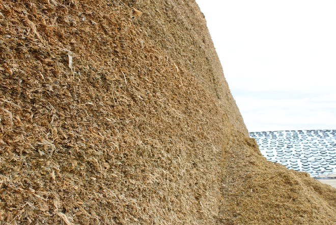 Silage piles continue to grow as farmers made inroads with the corn harvest last week.
