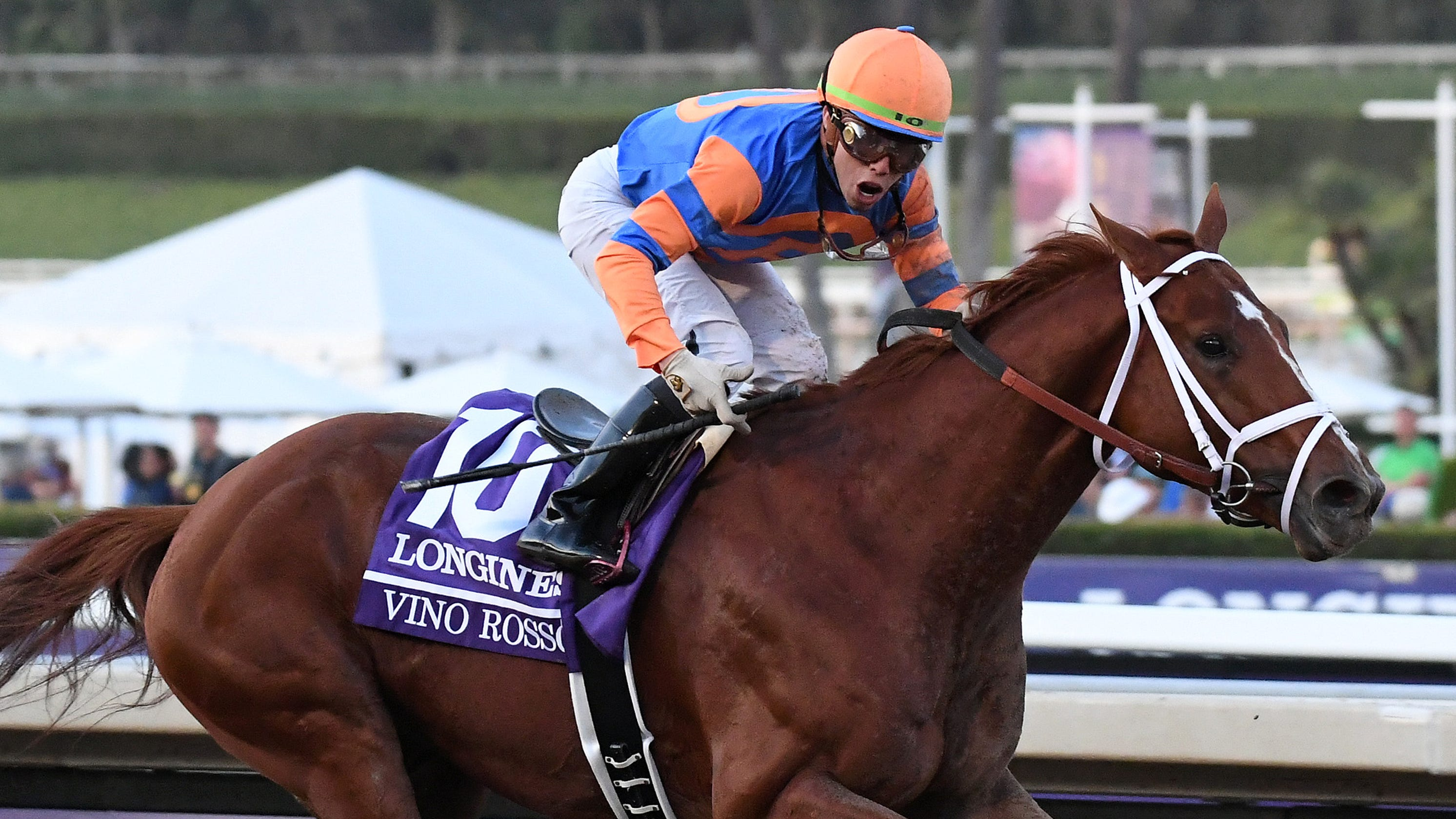 Breeders Cup Vino Rosso Bests Favored Mckinzie In Classic