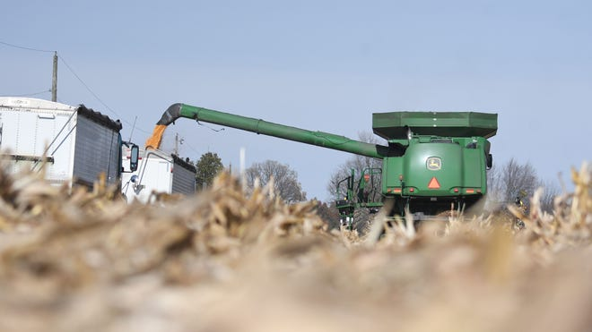 Corn fields around Crawford County were filled with trucks and farm machinery Monday as the fall harvest continues.
