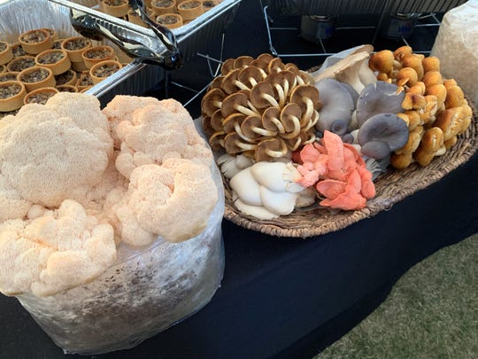 Southwest Mushrooms on display at the azcentral Wine & Food Experience on Sunday, Nov. 3, 2019.