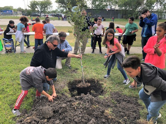 Ruben Orta, science teacher at Dr. M.L. Garza-Gonzalez Charter School, holds a young oak tree that students are preparing to plant on the school grounds on Tuesday, Nov. 5, 2019. The school is participating in Reforest Texas, a program that promotes reforesting as a solution to climate change.